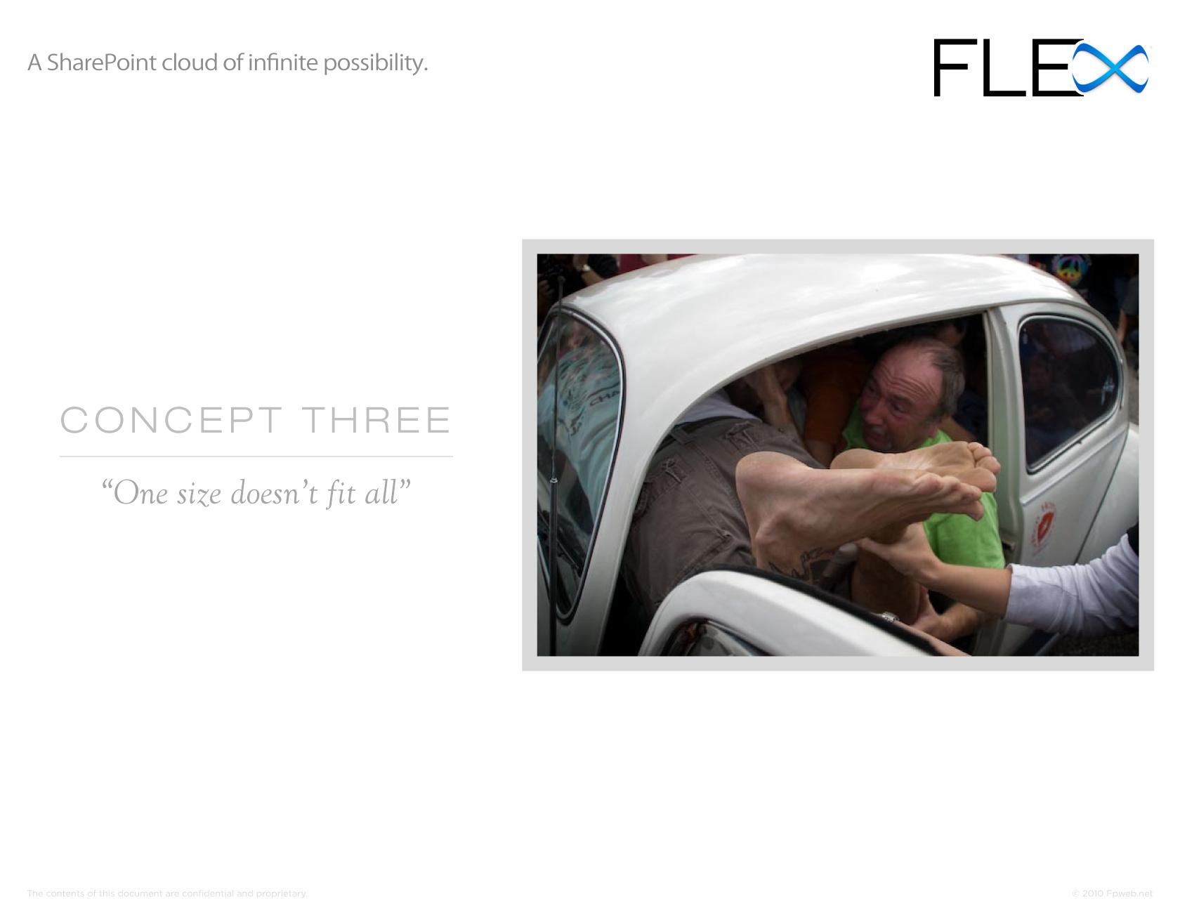 FLEX Presentation - Page 12