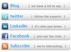 Fpweb.net 2009 Social Media Buttons