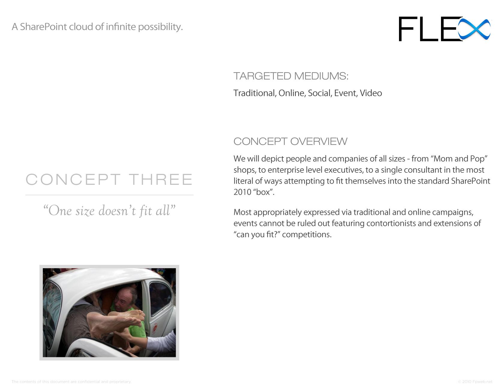 FLEX Presentation - Page 13